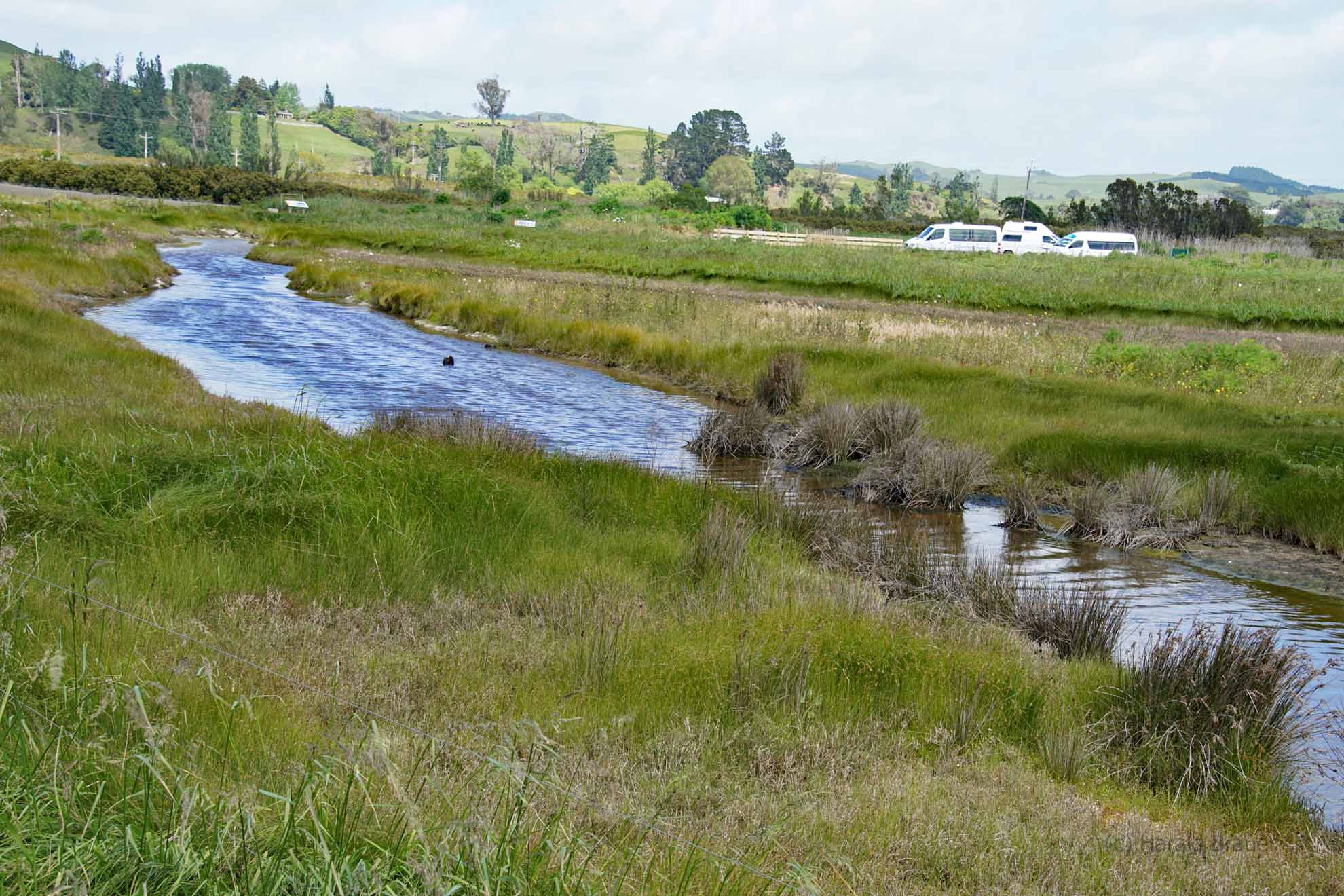 Moor, Gräben im Naturschutzgebiet