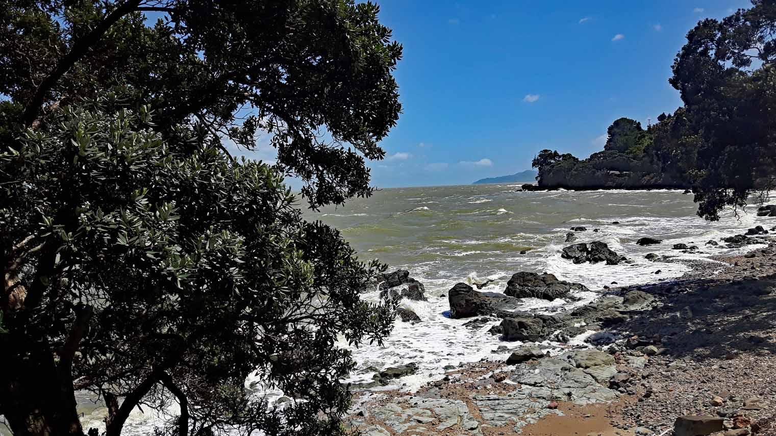 Coromandel Neuseeland am Hauraki Gulf