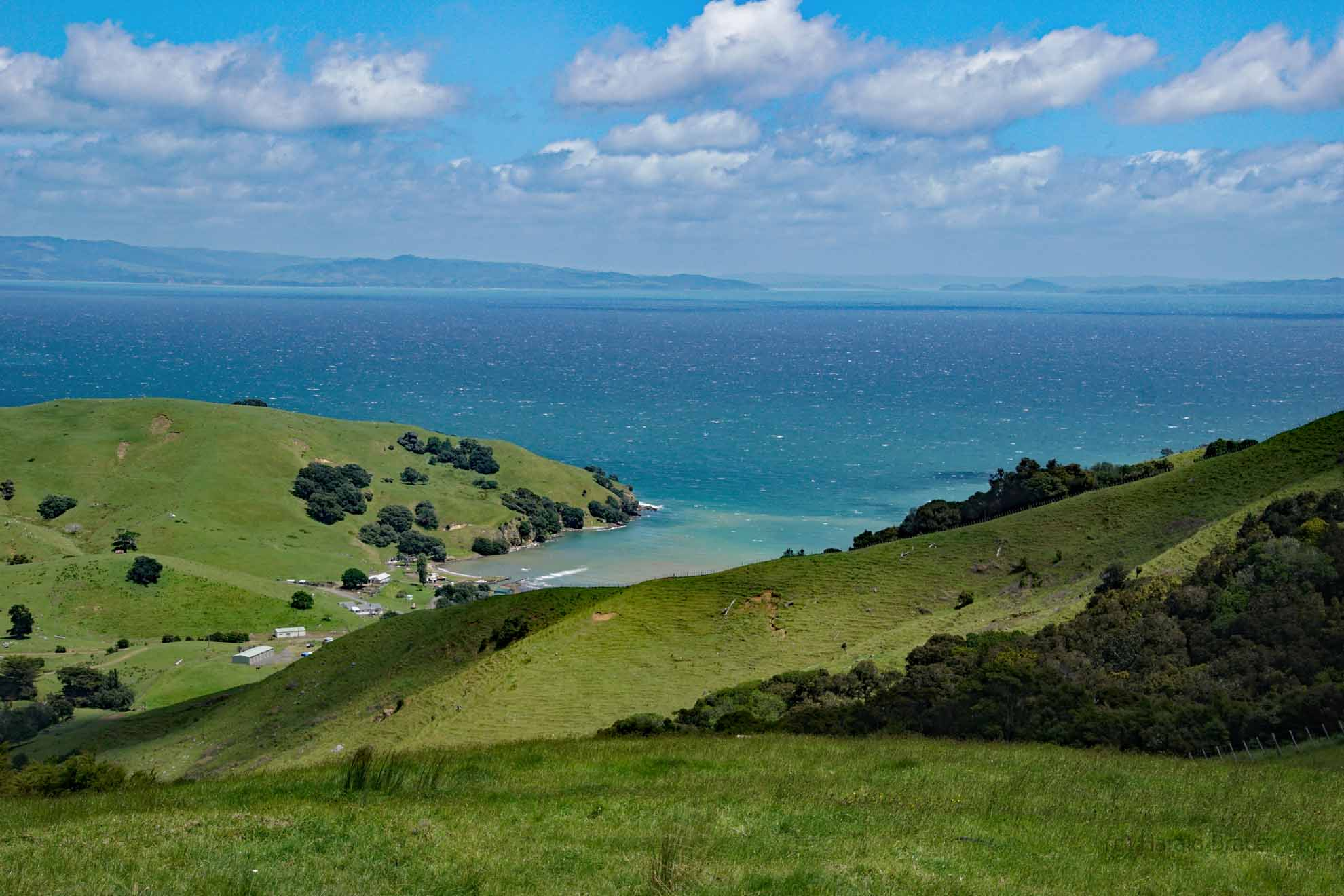 Coromandel First of Thames