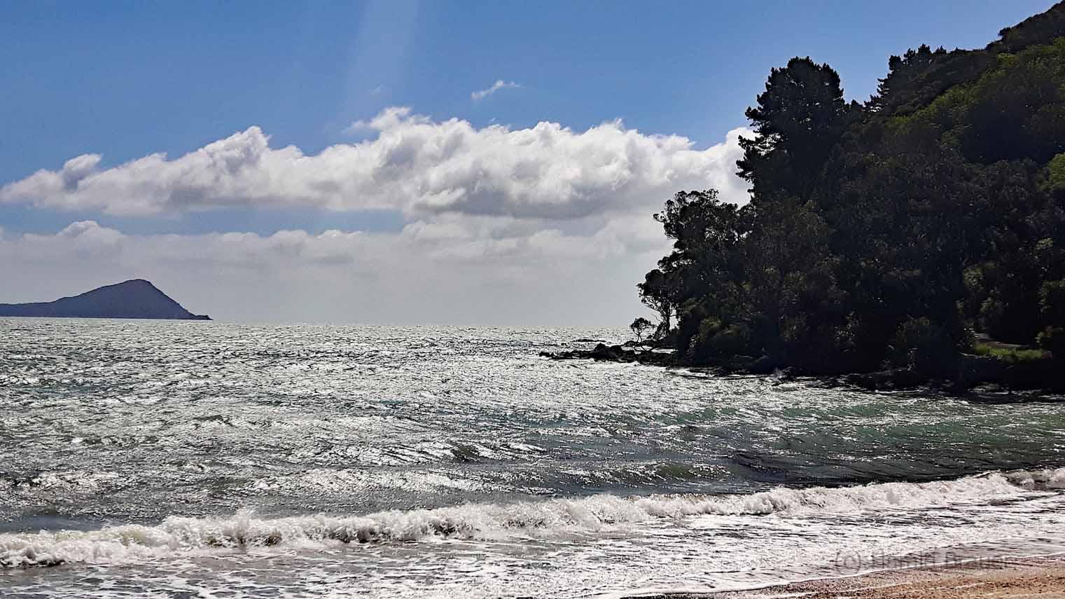 Long Bay Coromandel