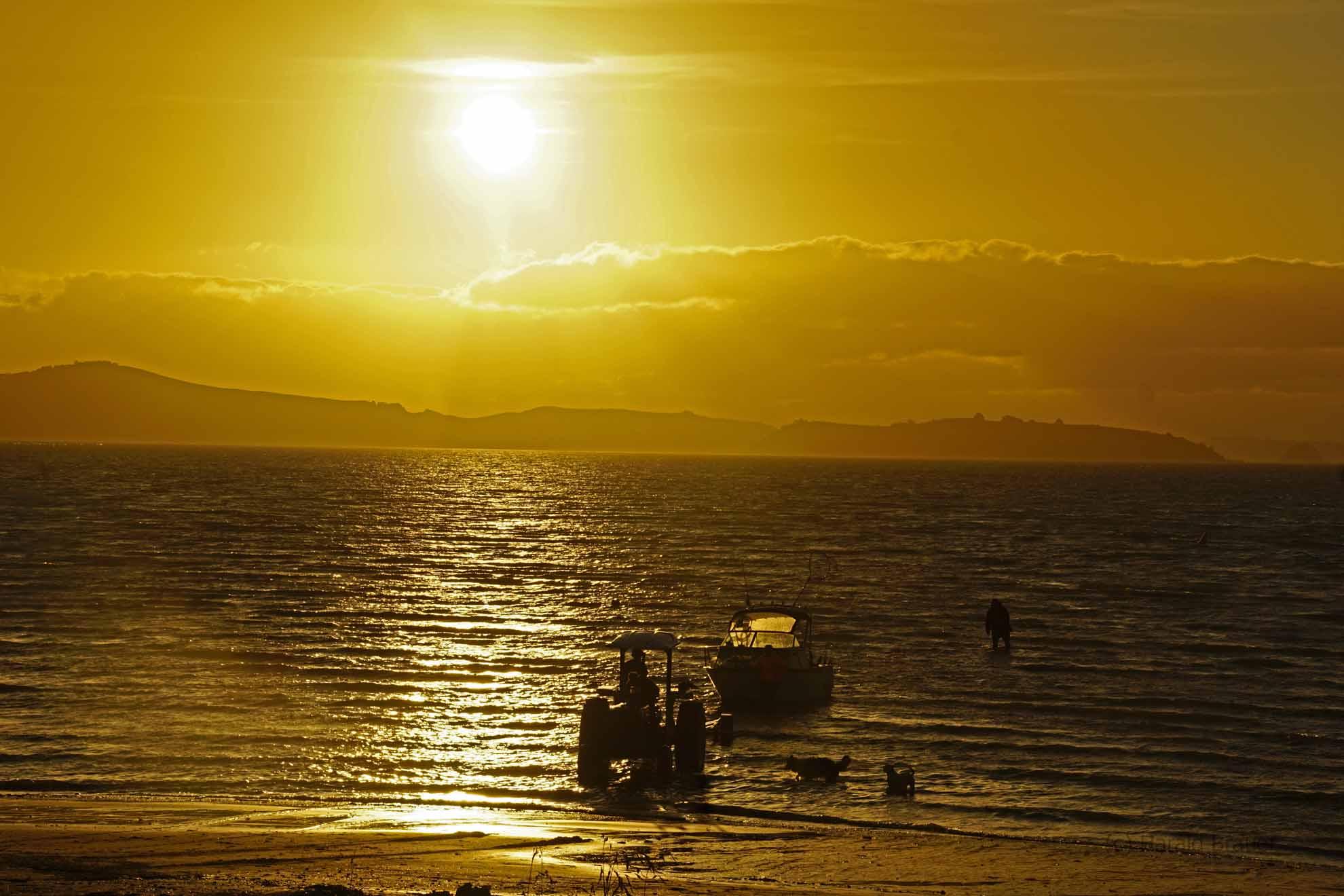 Long Bay Coromandel - Comming home from fishing