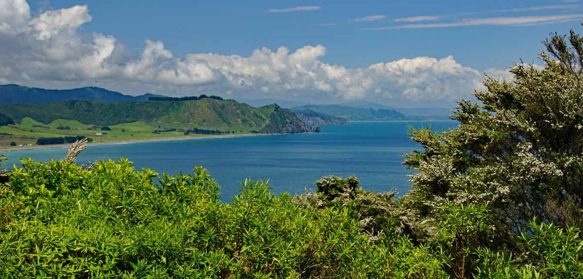 Hawai Bay of Plenty