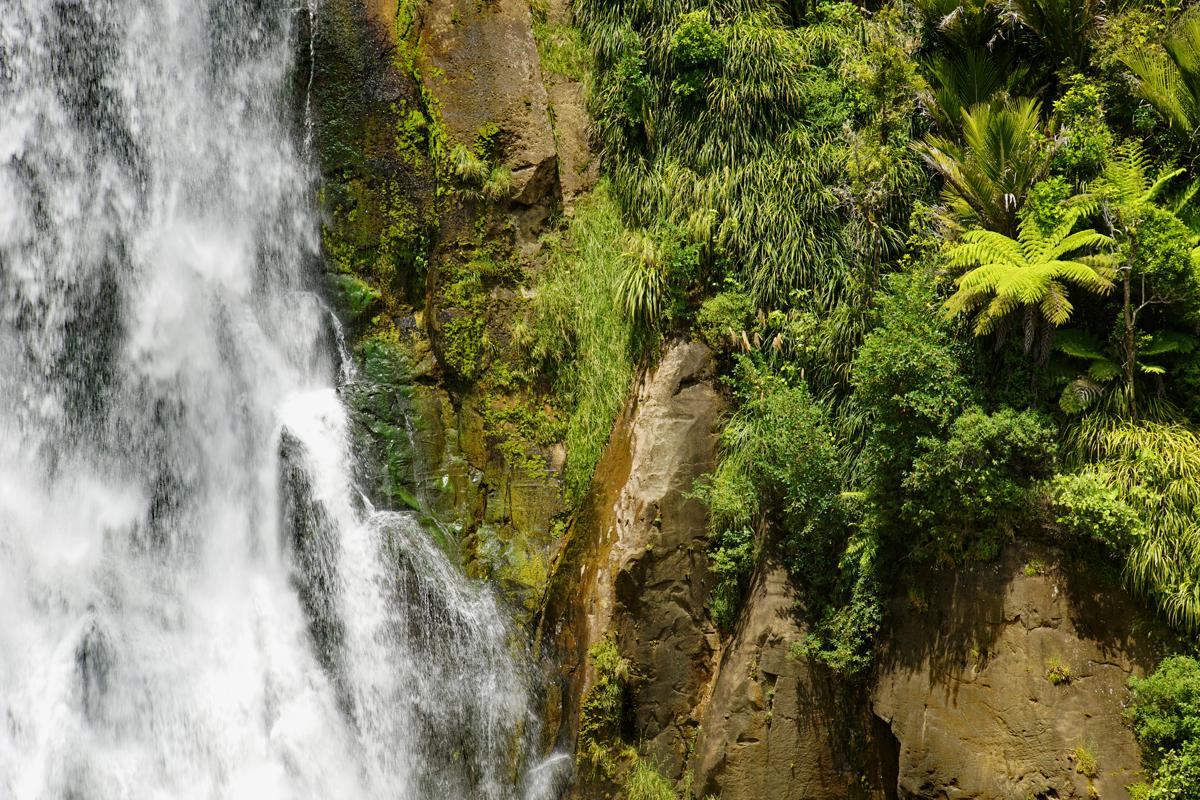 Auf dem Weg von Waitamo Caves nach Kawhia Mokopa Falls