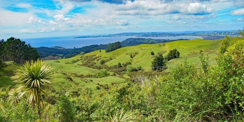 Neuseeland146