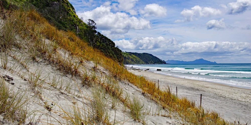 Mangawhai Heads Beach