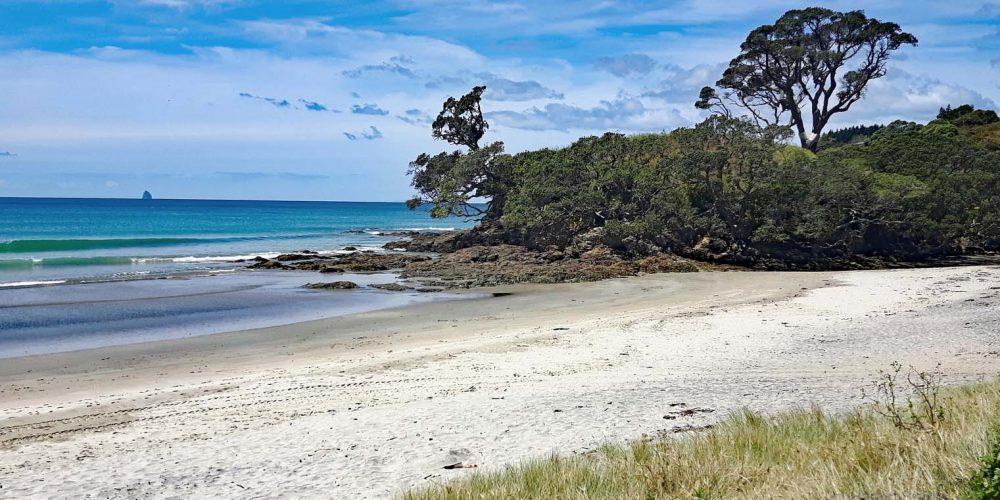 Waipu Beach