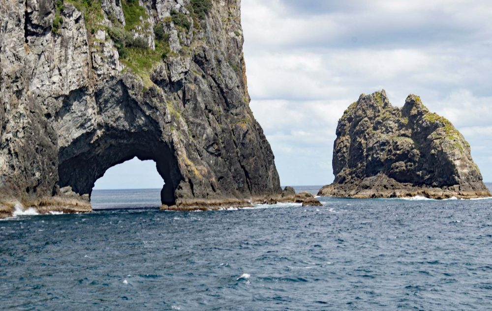 hole in the rock - Bay of Islands Neuseeland