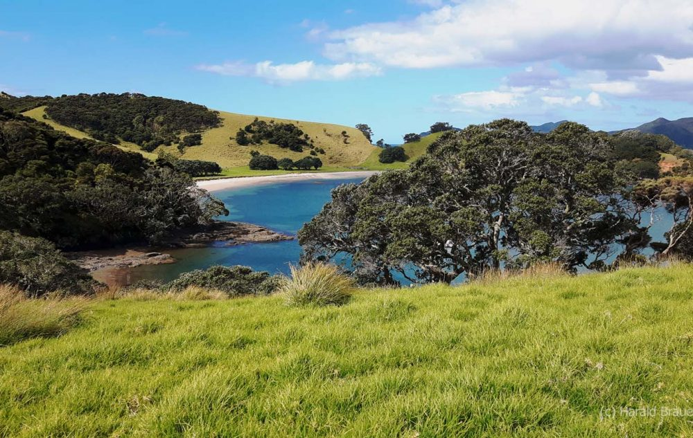 Bay of Islands - Urupukapuka Island