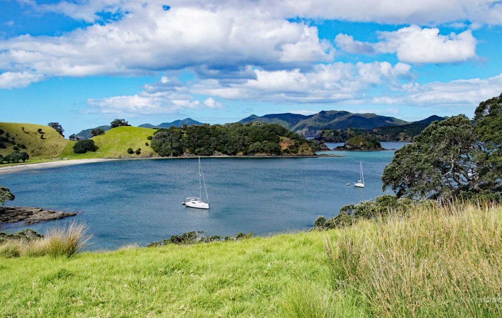 Urupukapuka Island - Bay of Islands Neuseeland